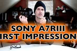 Sony A7RIII: First Impressions of a Small Powerhouse